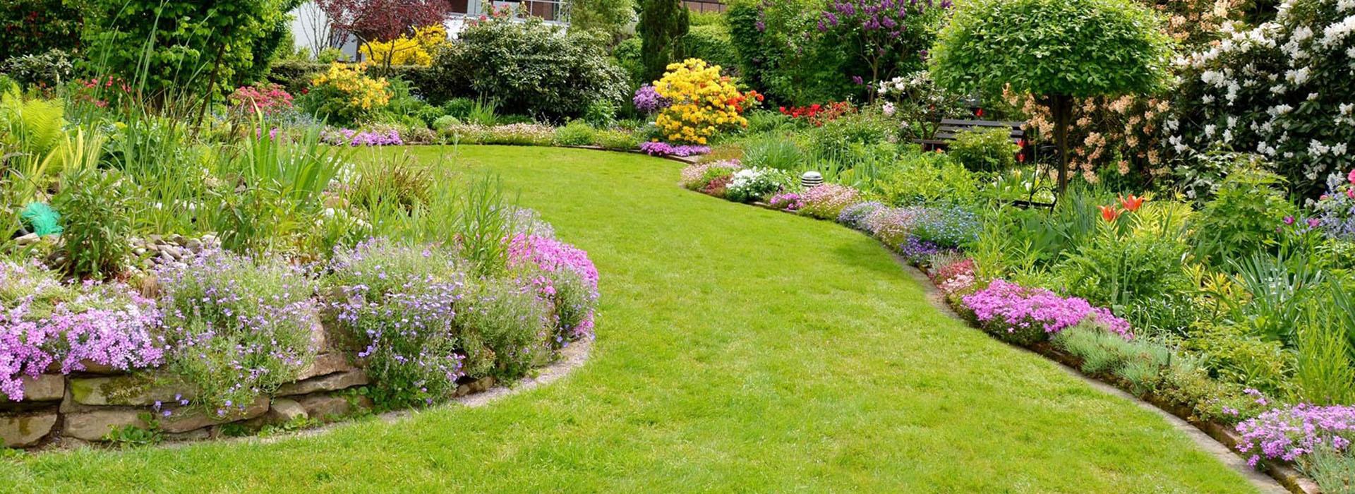 Barba verde realizzazione giardini e terrazzi for Giardini e terrazzi