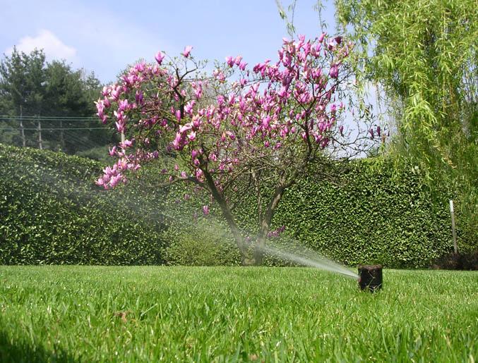 Impianti di irrigazionegiardiniere milano realizzazione for Preventivo impianto irrigazione