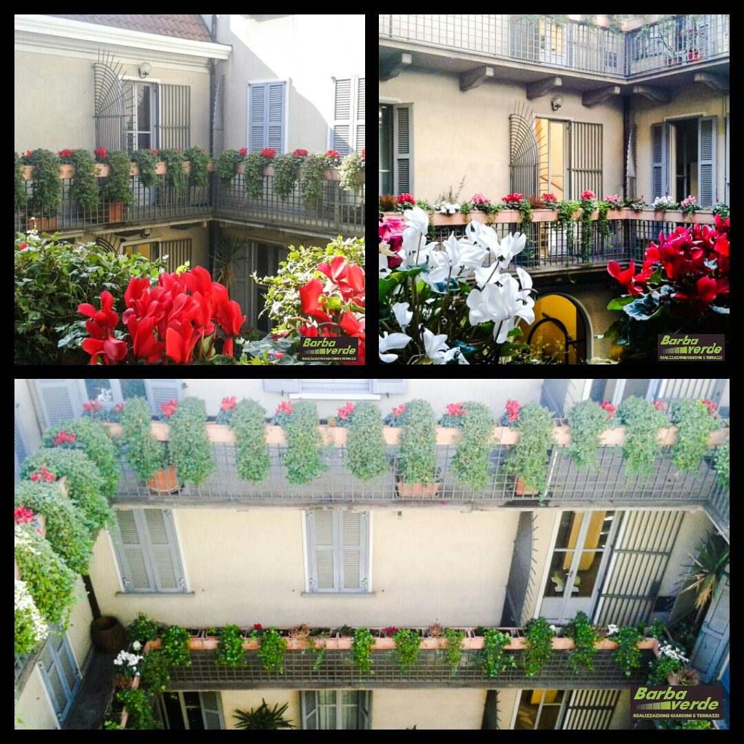 Giardiniere Milano Realizzazione Giardini e Terrazzi - Barba Verde ...